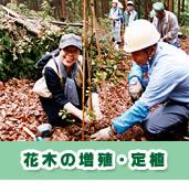 花木の増殖・定植